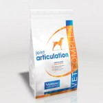 joint_articulation_dog-300
